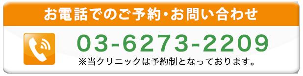 通話番号03-6273-2209