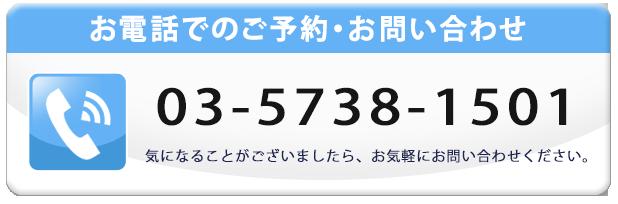 03-5738-1501