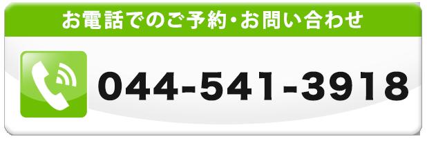 通話番号044-541-3918